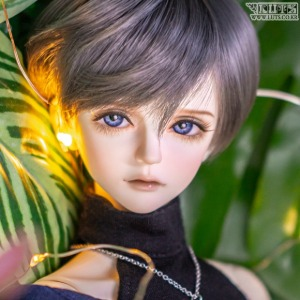 Model Delf XYLON Head Limited