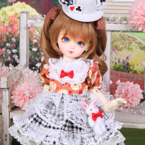 HDF Check Rabbit Set